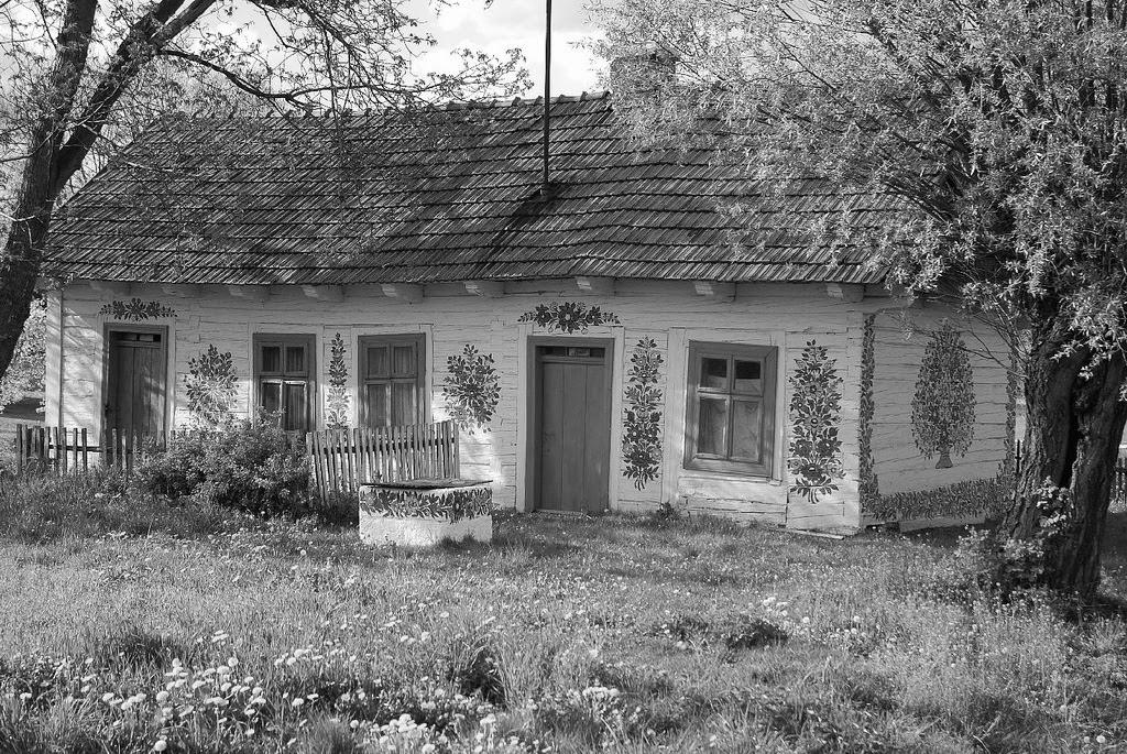 Çiçek Kaplı Bir Köy: Zalipie