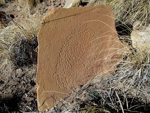 Photo: Pecked metate