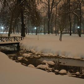 by Gigi Furtuna - City,  Street & Park  Night