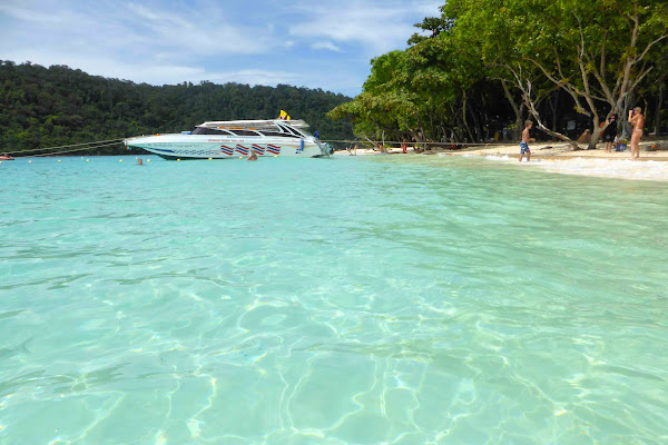 Cruise on board the Singthongchai speed boat to Phi Phi Islands