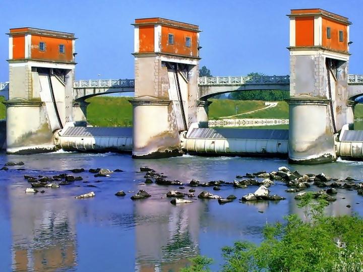 L'unione fa la forza!! di www.fioregiallophoto.it