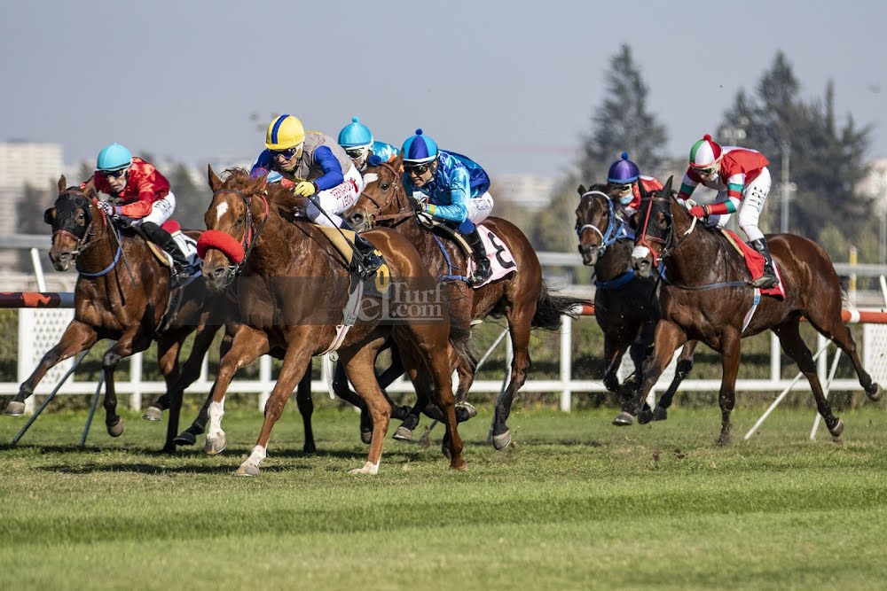 Wild Blond (Viscount Nelson) se adjudica Handicap (1300m-Pasto-CHS).
