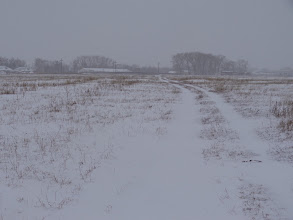 Photo: Поле за селом, 19 декабря 2013 года
