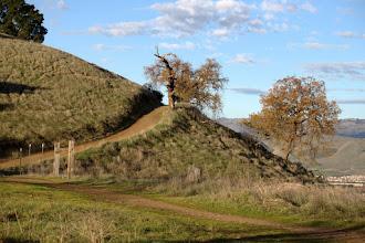 Photo: Hidden Springs Trail