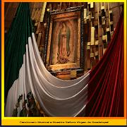 Cancionero a la Virgen de Guadalupe