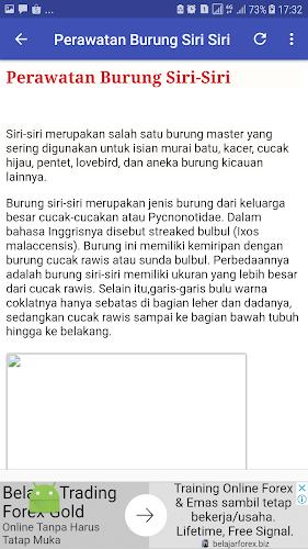 Download Kicau Master Burung Siri Siri Apk Latest Version For Android