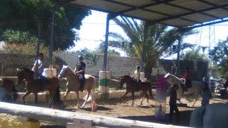 Los niños podrán disfrutar de los animales y realizar divertidas actividades en grupo.