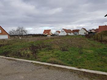 terrain à Salmbach (67)