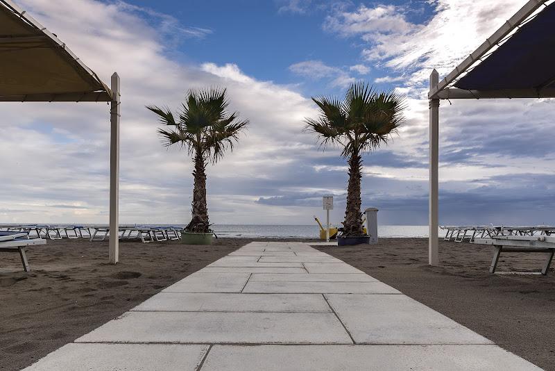 Palme in spiaggia di EmanueleB