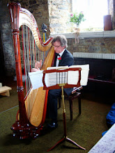 Photo: Harpist and choir member Harry Carpendale performing in Christ Church, Clifden.