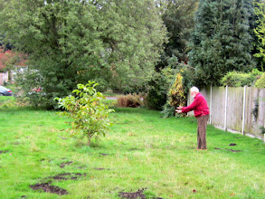 Photo: Wild Flower Project working party 20th October 2012