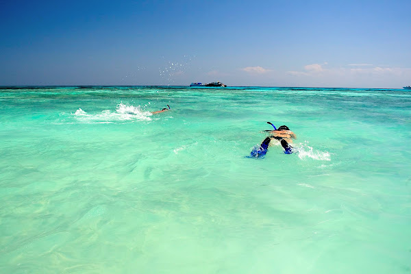 Snorkel in blue water in the Phi Phi Islands