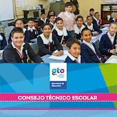 Consejo Técnico Escolar SEG v1
