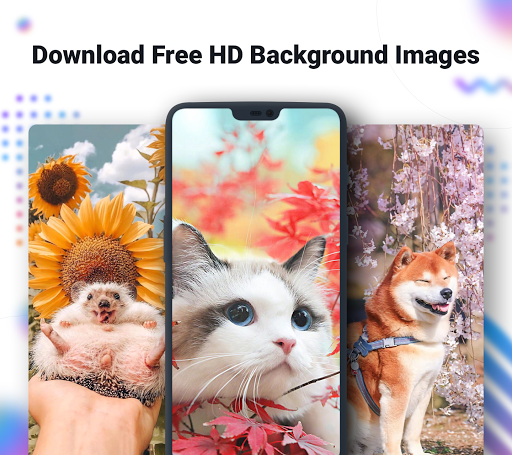 NoxLucky - HD Live Wallpaper, Caller Show, 4D, 4K screenshots 1
