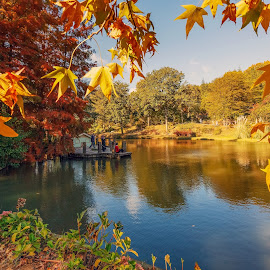 Atatürk Arboretumu by Veli Toluay - City,  Street & Park  City Parks