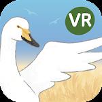'을숙도 생태탐험' 환경교육 VR콘텐츠 Icon