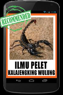 Pelet Kalajengking Wulung - náhled