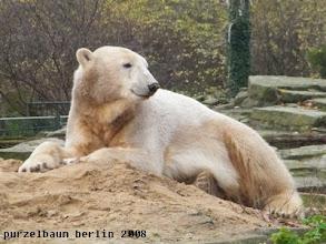 Photo: Nett um sich schauen :-)