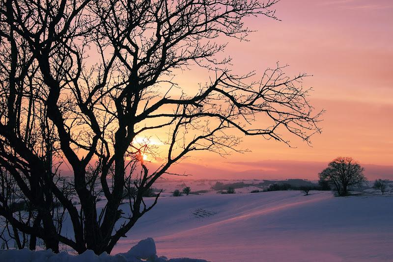 tramonto invernale di rino_savastano
