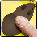 Cat Toys - MouseHunt Cat Games icon