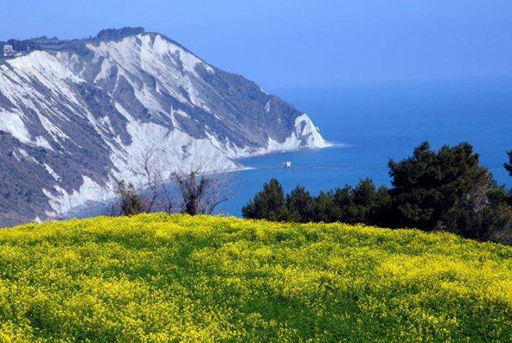 Monte Conero a Primavera di emorpi