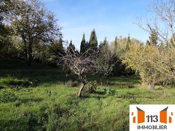 terrain à Castelnaudary (11)