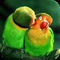Parrots. Live wallpaper icon