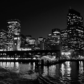 San Francisco Shining by Barbara Brock - City,  Street & Park  Skylines ( urban, city skyline, city lights, skyline at night, san francisco bay, san francisco, nightline )