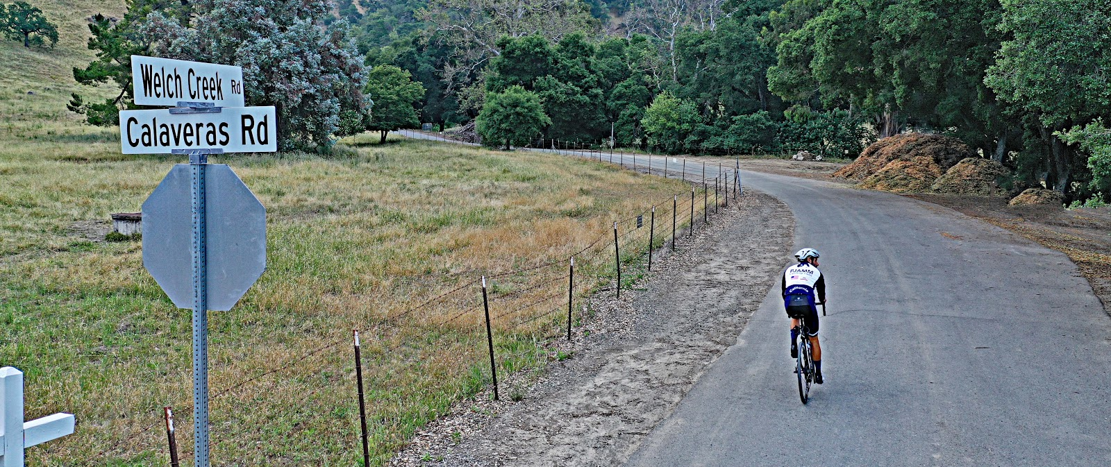 Bike climb Welch Creek Road - one lane road sign, roadway and oak trees