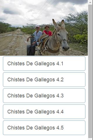 Chistes De Gallegos 4