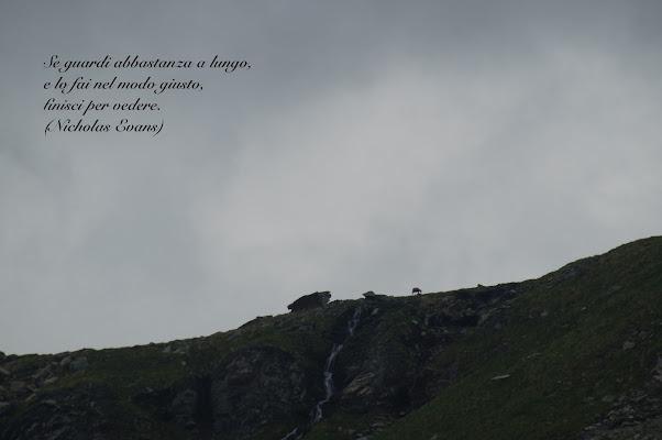 Alla natura non serve la pubblicità di Astrik