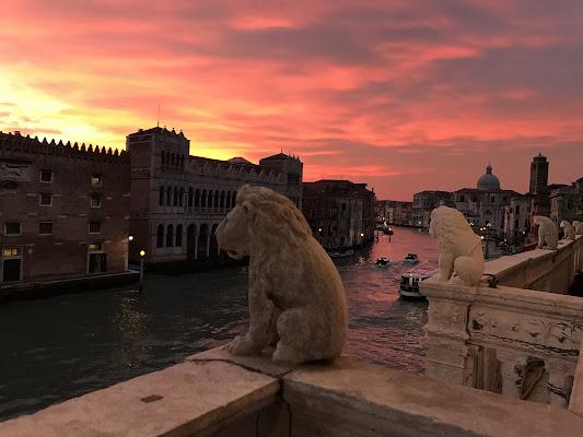 Venezia dall'alto di Federica Repetto