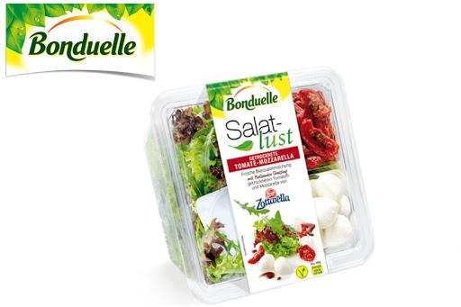 Bild für Cashback-Angebot: Bonduelle Salatlust Schale