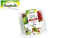 Angebot für Bonduelle Salatlust Schale im Supermarkt