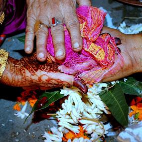 Saptapadi by Subrata Chatterjee - Wedding Other ( vivah., priest, hindu marriage, bride, groom )