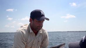 River Shark! thumbnail