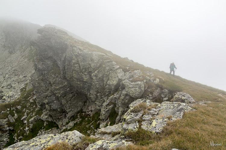 Zona vârfului Stoiniţa, foto Marius