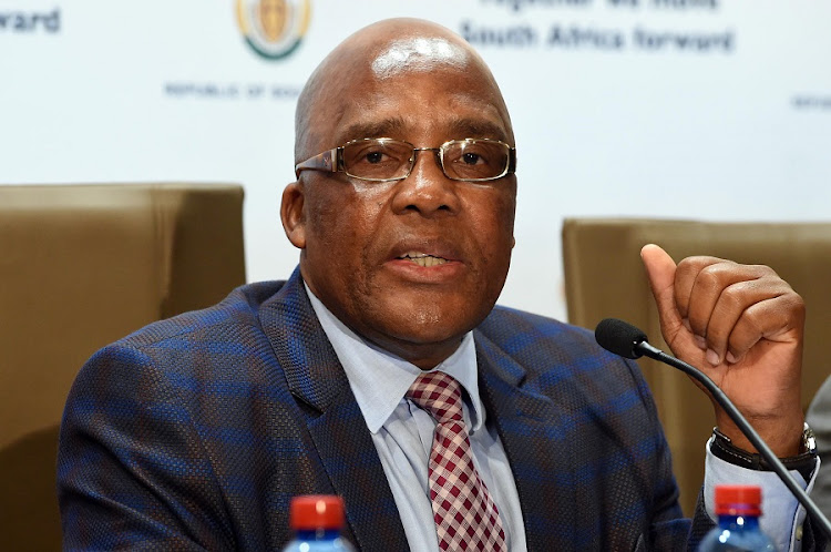 Home affairs minister Aaron Motsoaledi. File photo.