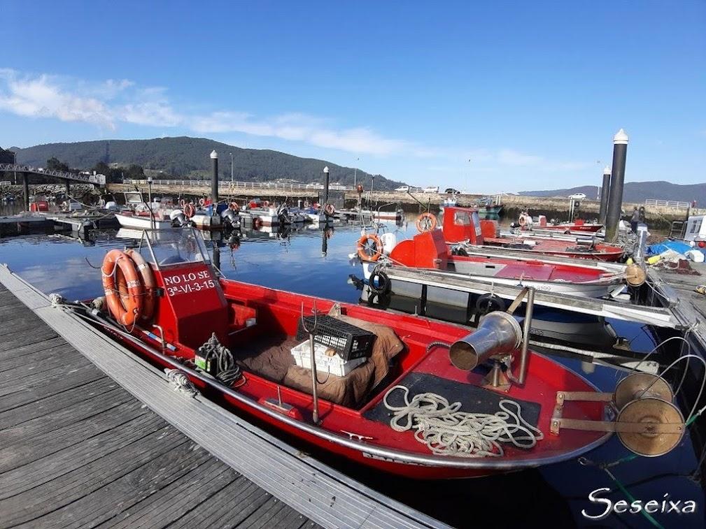 Puerto de Cesantes