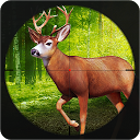 Jungle Animals Hunting 2015 APK