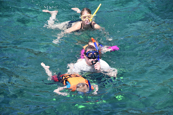 Snorkel with colourful fish