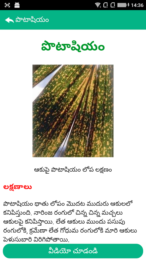 Oil Palm Nutrients Telugu- screenshot