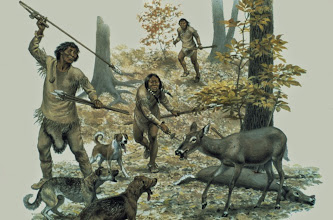 Photo: Clovis Deer Hunters New studies of genetic samples from native New World populations (from Alaska to Brazil) show they all share a unique allele at a specific microsatellite locus that is not found in any Old World populations (except Koryak and Chukchi of western Berengia), which implies that all modern Native Americans descended from a single founding population that was the result of migration of a narrow North Asian population. This is further supported by ancient DNA studies showing that Late Pleistocene Paleoamerican carried the same haplogroups (and even sub-haplogroups) as modern Native groups. Dogs are depicted whose ancestors must have accompanied the first humans into America- having co-evolved with Homo sapiens  from wolves some 135 Kya. http://www.centerfirstamericans.com/who.php Texas A&M University