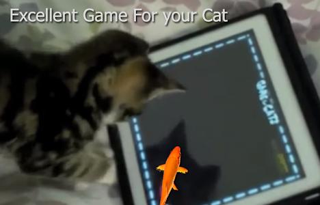 Fish Game for Cat screenshot 1