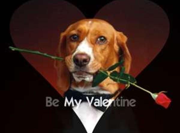 Be My Valentine Body Powder Recipe