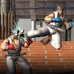 Karate Fighter - Taekwondo Kung fu Tiger Combat 3D Icon