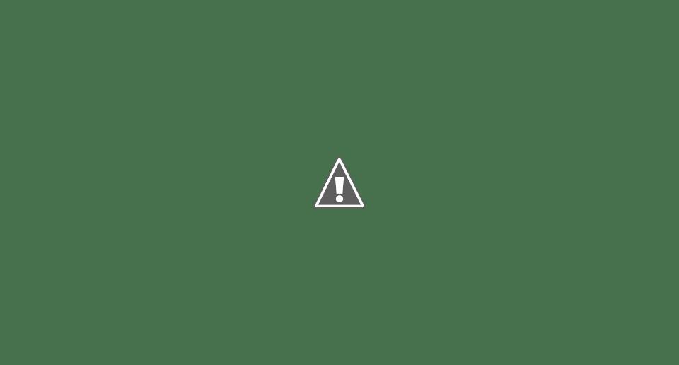 Lutas pelo Brasil