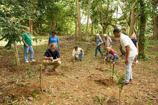 DR-Travelers-Planting.jpg - Work within a local community on reforestation projects in the Dominican Republic.