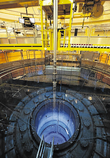 The reactor at the nuclear power plant in Muehleberg, Switzerland, during inspection last week Picture: REUTERS/Ruben Sprich