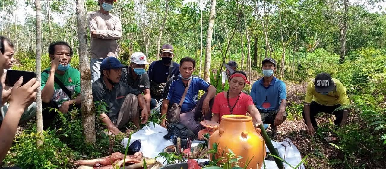 Kasus Penyerobotan Lahan Warga Dusun Jirak Desa Samalantan Di selesaikan Dengan Ritual Adat Dayak